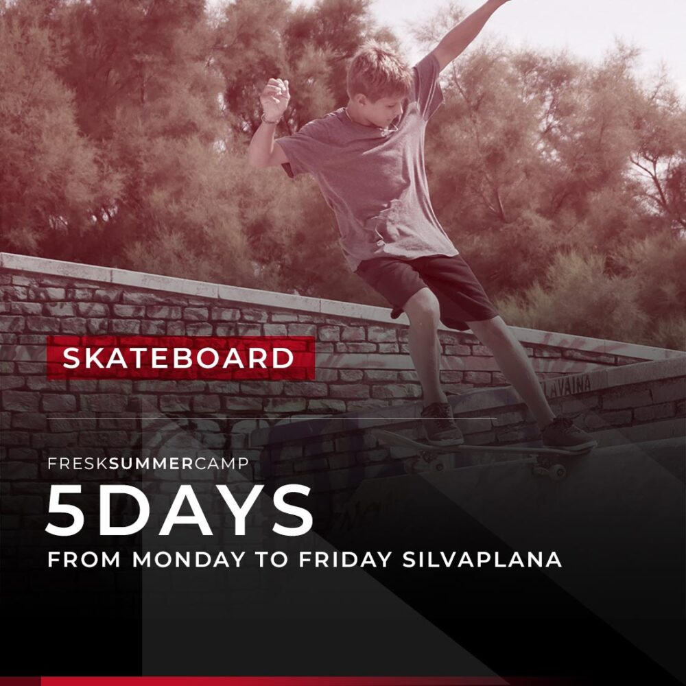skateboad and style camp 5days special week silvaplana